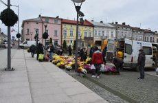 Więcej o: Ponad 3 tysiące chryzantem trafiło wręce mieszkańców gminy Brzozów