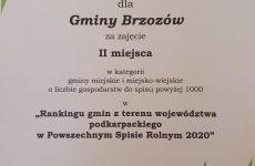 Więcej o: Gmina Brzozów nadrugim miejscu wKonkursie Gmin oNajwyższym Odsetku Spisanych Gospodarstw przez Internet
